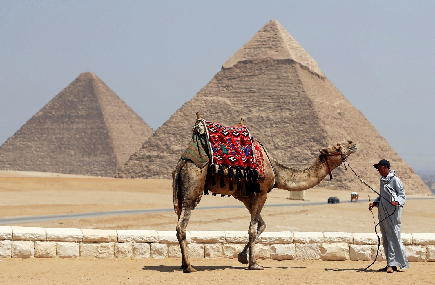 Egypt releases camel operator accused of facilitating Pyramids pornographic