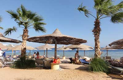 Warm weather expected for Egypt on Sunday