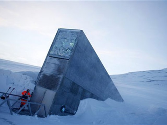 Syria S Crops Sheltered In Arctic Doomsday Seed Vault Egypt