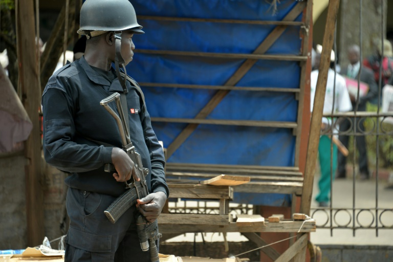 79 abducted pupils freed in troubled Cameroon region: minister