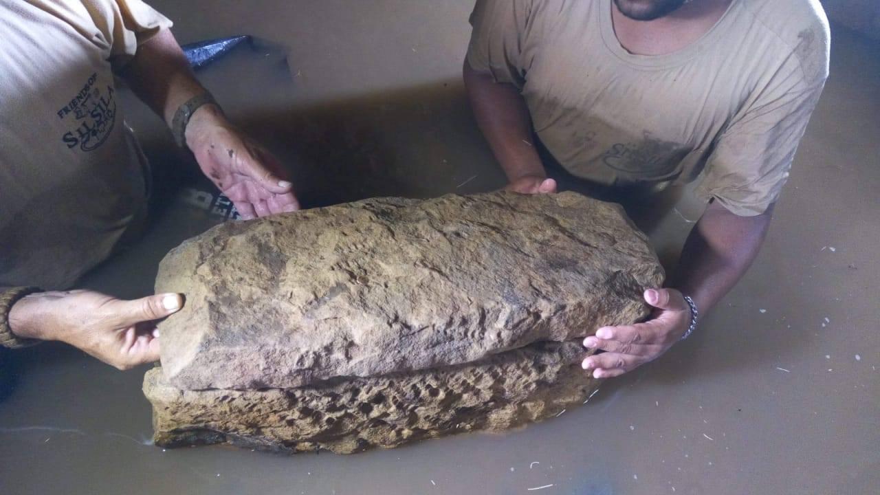 Swedish mission unearths pharaonic cemetery in Aswan