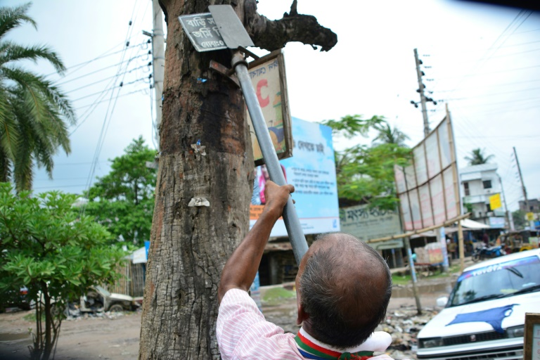 Green thumb spruces up Bangladesh one tree at a time