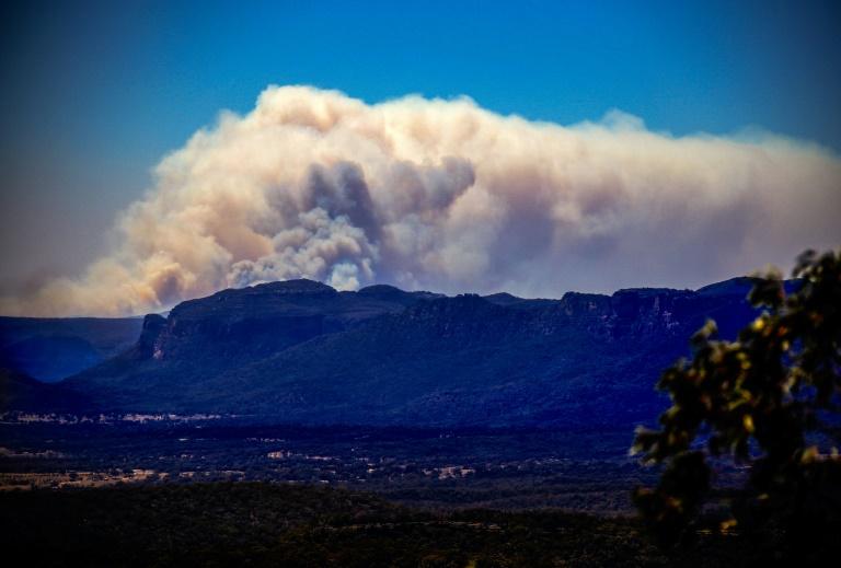 bushfires nsw - photo #12