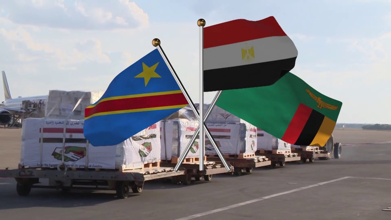 Egypt dispatches coronavirus medical aid to Congo and Zambia