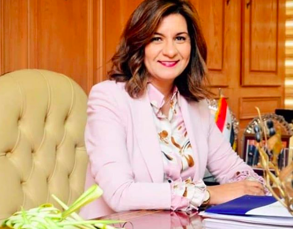 Insurance policy to be launched for Egyptian expatriates
