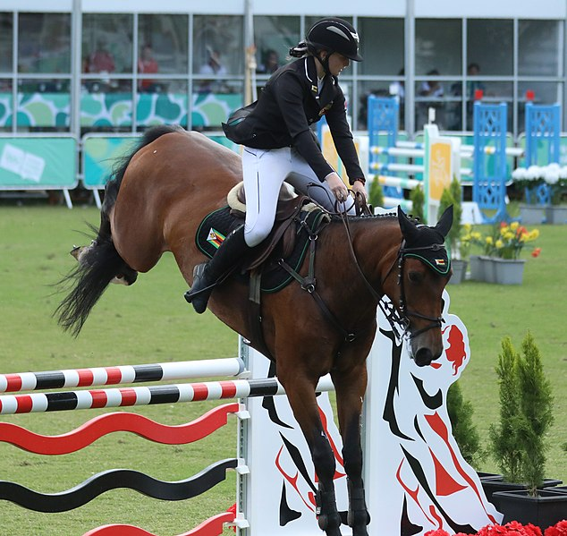 Egyptian riders Nayel Nassar, Mohamed Taher qualify for equestrian final at Tokyo Olympics
