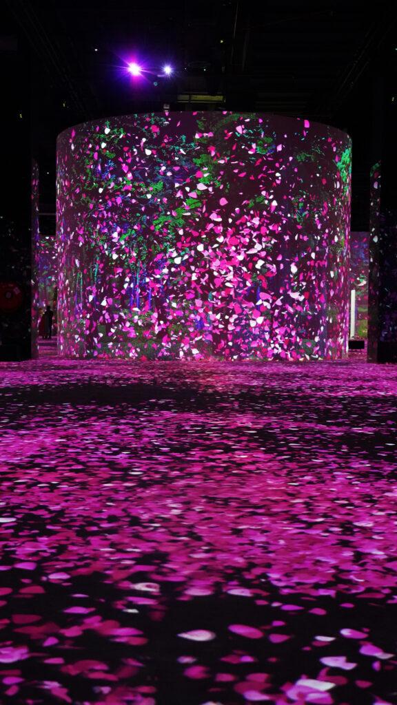 Dreamed Japan (1)-Infinity Des Lumières in Dubai