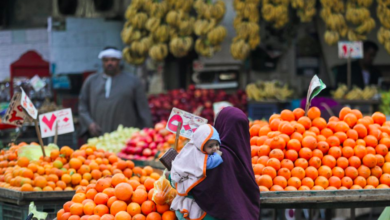 A woman holding her baby shops at a vegetable market amid the coronavirus disease (COVID-19) pandemic in Cairo, Egypt February 25, 2021. REUTERS/Mohamed Abd El Ghany